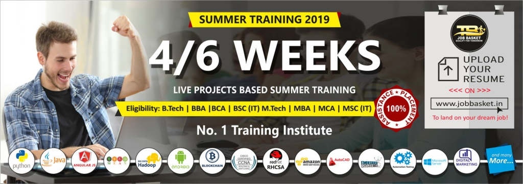 best 6 weeks summer training in noida-Training basket