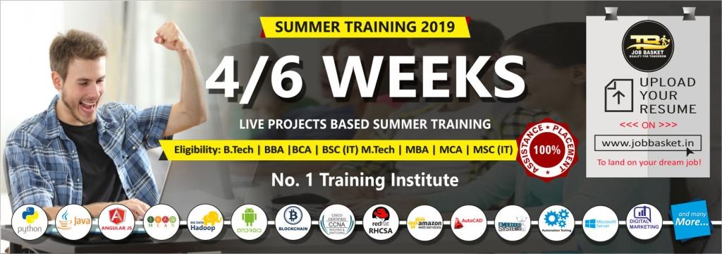 best 6 weeks summer training in noida-Training basket